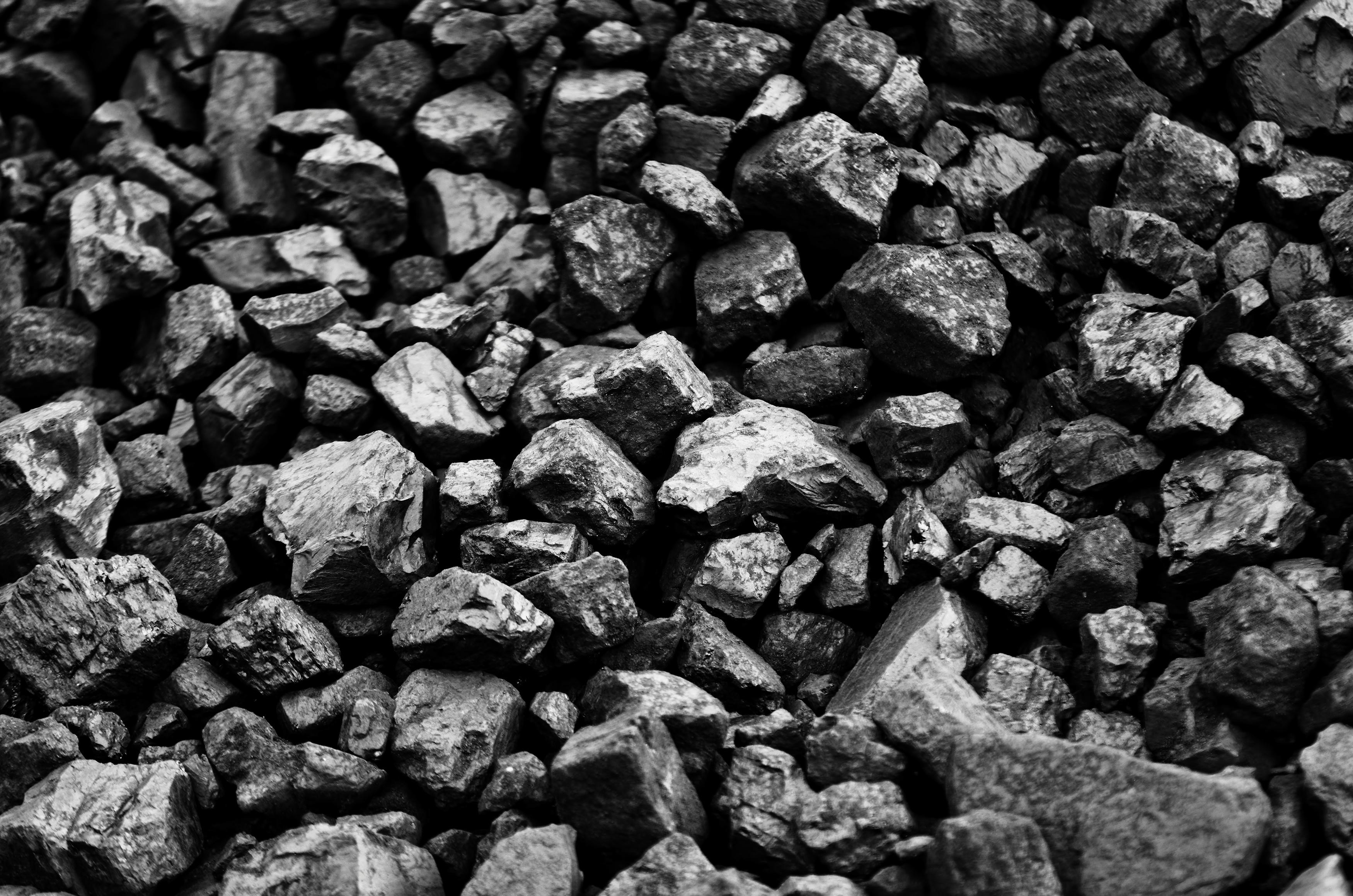 worki na węgiel cena