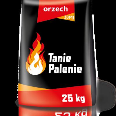 orzech-28