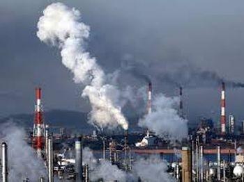 eko węgiel